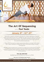 The Art of Sequencing with Paul Teodo