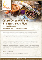 Cacao Ceremony and Shamanic Yoga Flow with Levi Banner