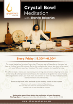 Crystal Bowl Meditation with Shervin Boloorian