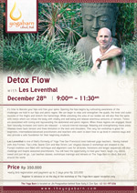 Detox Flow With Les Leventhal