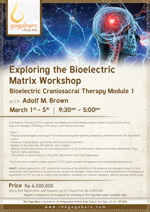 Exploring the Bioelectric Matrix Bioelectric Craniosacral Therapy Module 1 Training with Adolf M Brown
