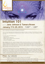 Intuition 101