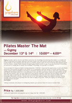 Pilates Master the Mat