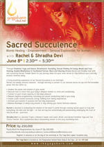 Sacred Succulence - Sensual Exploration for Women