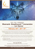 Shamanic Breathwork Immersion with Levi Banner