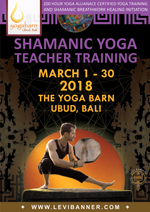 Shamanic Yoga Teacher Training with Levi Banner