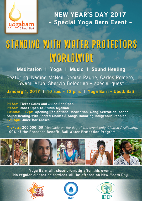 standing with water protectors worldwide
