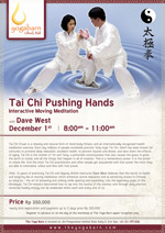 Tai Chi Pushing Hand