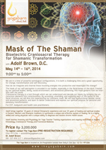 Mask of The Shaman