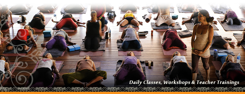Daily classes, Workshops & Teacher Trainings